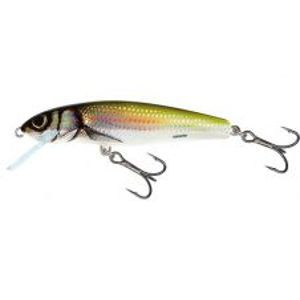 Salmo Wobler Minnow Floating Holo Bleak-7 cm 6 g
