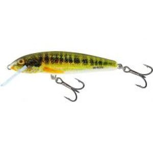 Salmo Wobler Minnow Sinking holo Real Minnow-6 cm 6 g